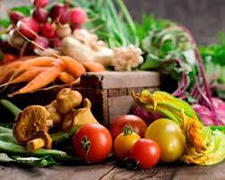 nutrition &wellness2