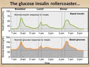 insulin rollercoaster graph